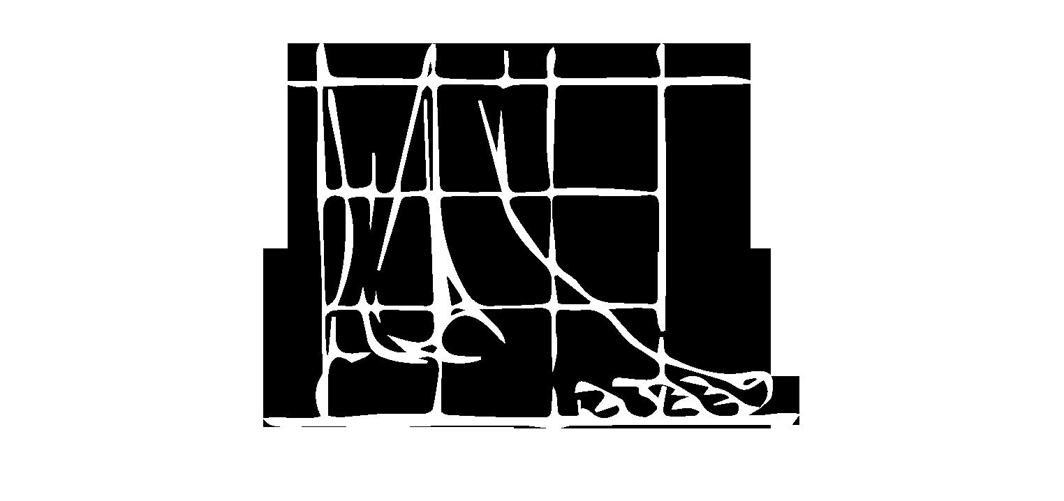 Logotipo de la Clínica del Pie Ponferrada